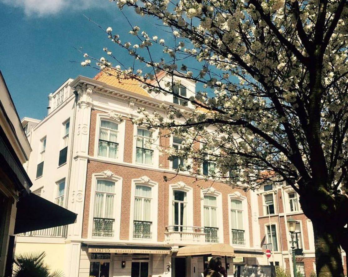 Hortus Resto in Den Haag is dan misschien officieel een vegetarisch restaurant, maar er zijn genoeg opties als je veganistisch eet. De locatie is prachtig en als de zon schijnt kan je lekker genieten op het terras.