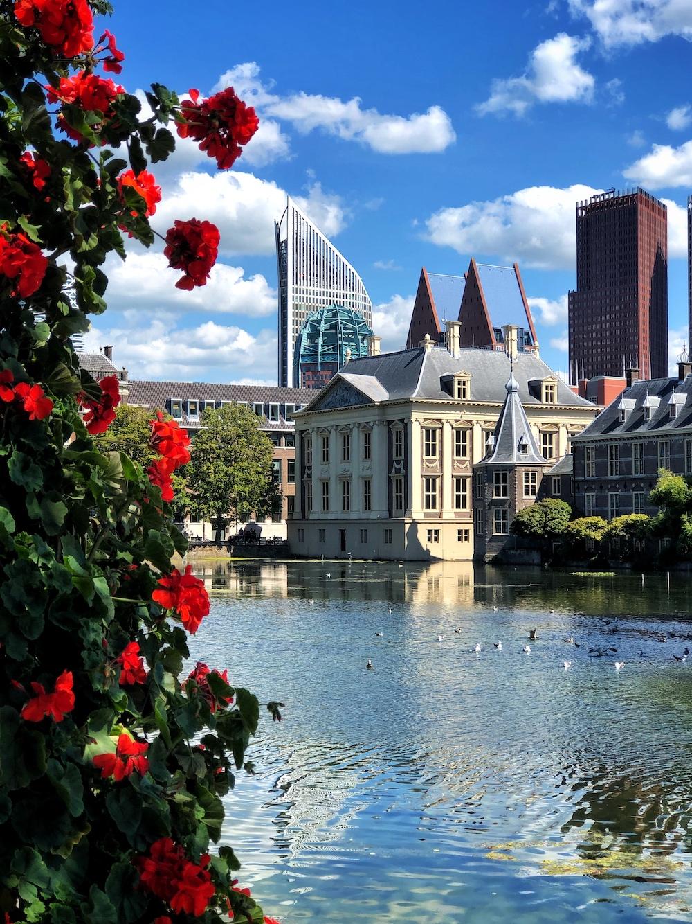 In het Mauritshuis in Den Haag bewonder je de beste schilderijen die Nederland kent, zoals die van Rembrandt en Vermeer.